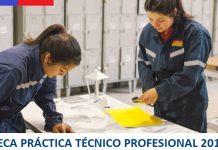 Bono Beca Práctica Técnico Profesional 2018